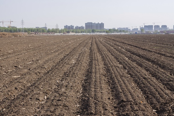 """Soil Pollution in China """"Still a State Secret"""""""