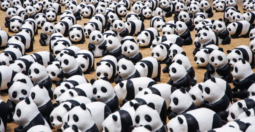 The Chinese Used to Think Pandas Were Monsters