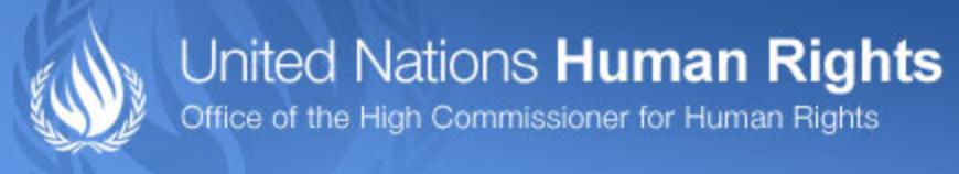 """U.N. Commissioner: Security Law """"Too Broad, Vague"""""""