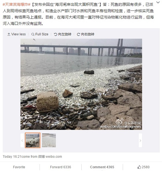Netizen Voices: Tianjin Fish Filets