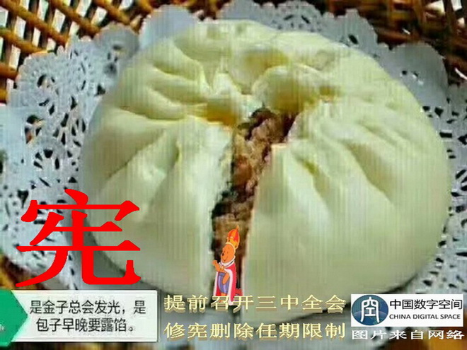 Phrase of the Week: Steamed Bun Betrays Constitution