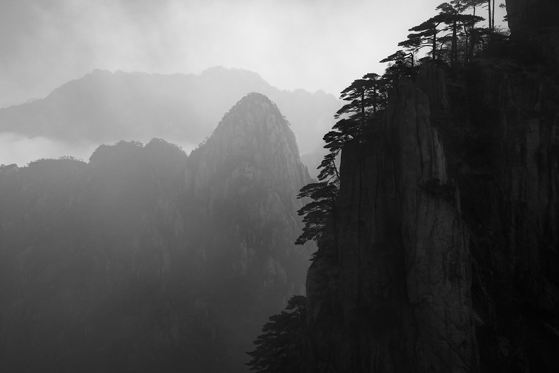 Photo: Lost in the Morning Mist, by Alex Berger