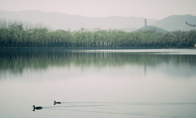 Photo: Spring in Summer Palace, by Megan Wong