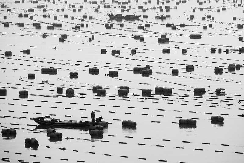 Photo: The Floating Sea Farms of Xiapu, by Alex Berger