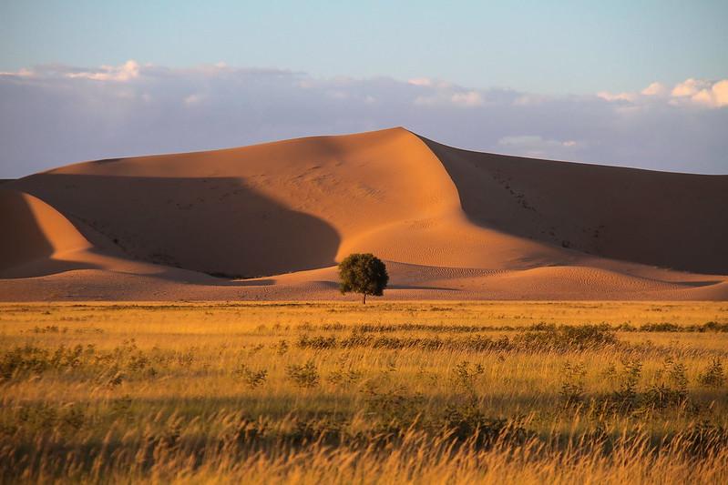 Photo: Inner Mongolia, by Rokkor.G
