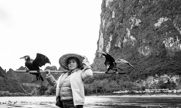 Photo: The Lady From Li River, by Gauthier DELECROIX – 郭天