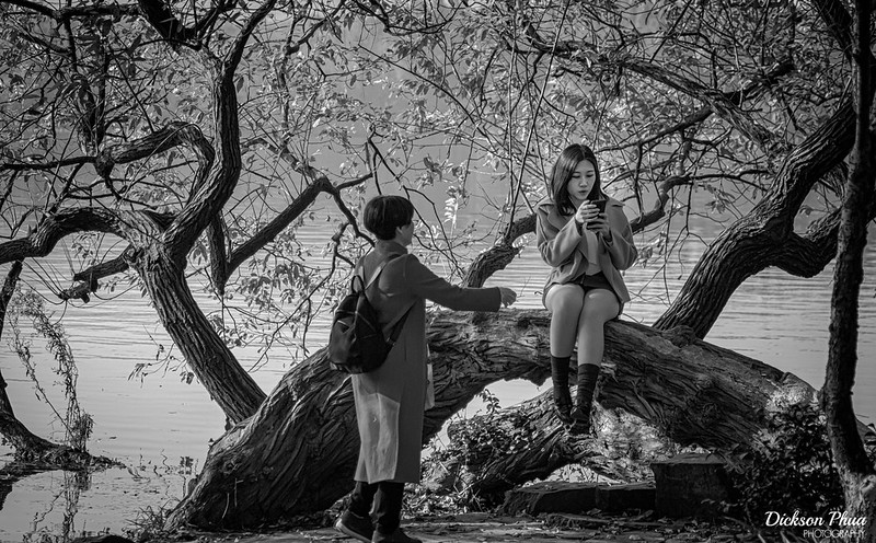 Photo: Finding the Perfect Angle at West Lake, by Dickson Phua