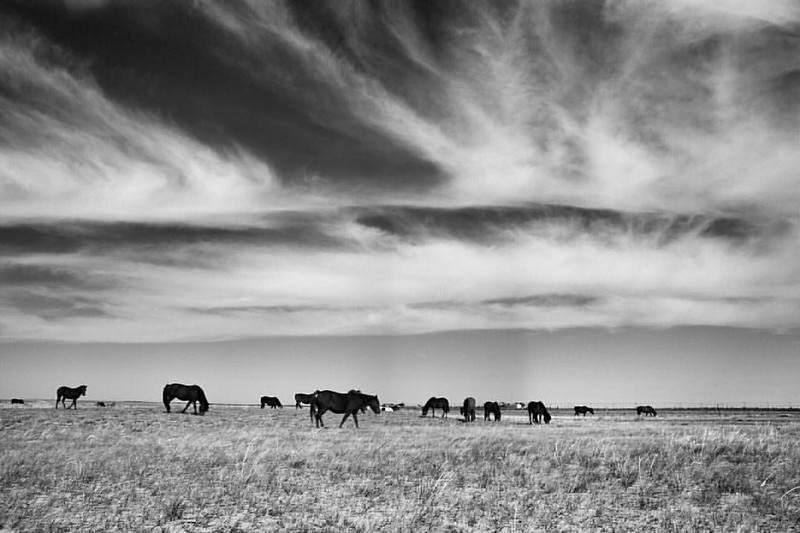 Photo: Untitled (Inner Mongolia, 2015), by Chenbin16